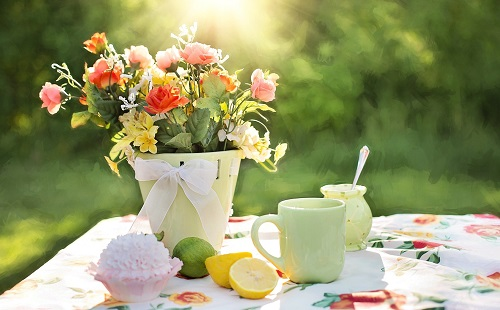 Top Gardening Tips That Would Not Allow You Go Wrong