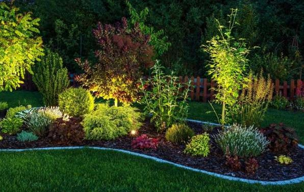 8 Ways to Maintain your Lawn and Garden