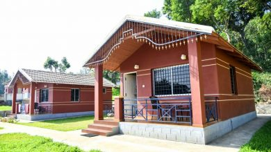Why you need to go for homestays while at Chikmagalur!